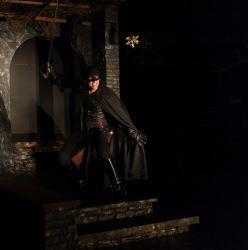 Danny Gavigan as Zorro