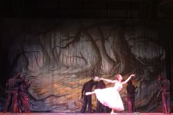 Good Witch Ballet